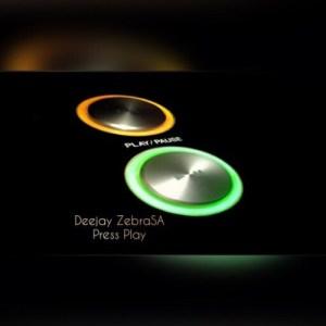 Deejay Zebra SA – Press Play