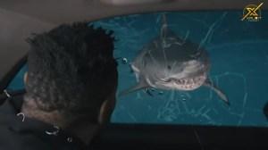 Xploit Comedy – The Crazy Taxi Driver (Video)