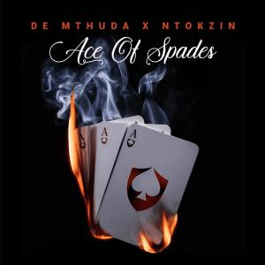 De Mthuda, Ntokzin – uMsholozi (feat. MalumNator)