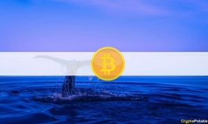 After Short Break, Third Largest Bitcoin Whale Buys $24M Worth of BTC