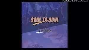 DJ Ace & Real Nox – Soul to Soul