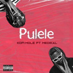 Kofi Mole – Pulele Ft. Medikal
