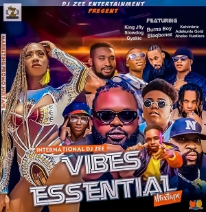 DJ Zee – Vibes Essential Mix