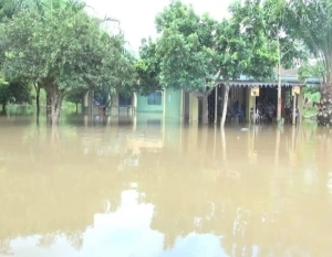 OMG!! Flood Kills 54 Persons, Destroys 30,356 Houses In Kano