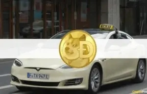 Elon Musk Inspired a German Tesla Taxi Company to Enable Dogecoin Payments