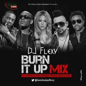 DJ Flexy – Burn It Up Mix Ft. R. Kelly, S. Paul, Shaggy, Shakira, Akon & T-Pain