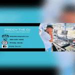 Priddy The DJ – Amapiano Mix 01