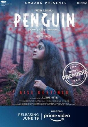 Penguin (2020) (Hindi)