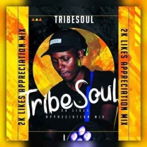 TribeSoul – 2K Appreciation Mixtape