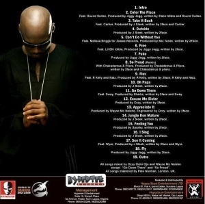 2Face Idibia - Enter The Place
