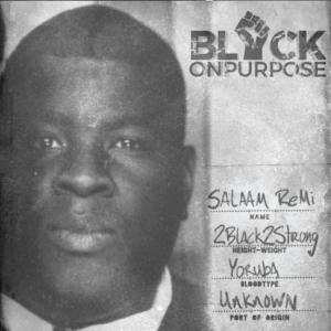 Salaam Remi - Black On Purpose Outro
