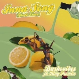 Darkovibes ft. King Promise – Inna Song (Gin & Lime)