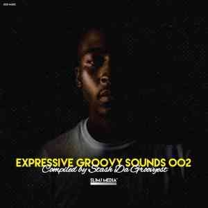 Stash Da Groovyest – Expressive Groovy Sounds 002 Mix