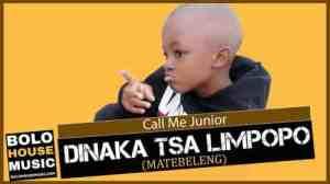 Call Me Junior – Dinaka tsa Limpopo (Matebeleng)