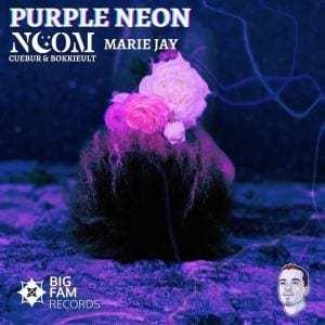 Noom, Cuebur & BokkieUlt – Purple Neon Ft. Marie Jay