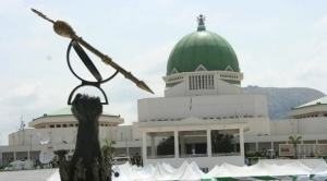 National Assembly Minority Caucus Tells Nigerians To Ignore FG On Twitter Ban