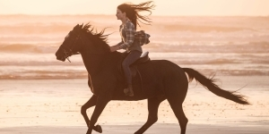 Black Beauty Trailer Reveals First Footage Of Kate Winslet Movie For Disney+