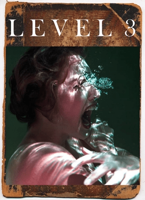Level 3 (2020)