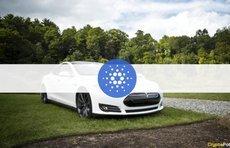 Elon Musk's Tesla Should Accept ADA, Says Cardano Founder Charles Hoskinson