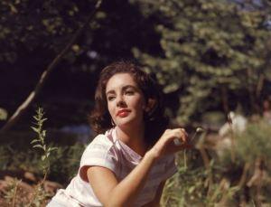 Biography & Career Of Elizabeth Taylor