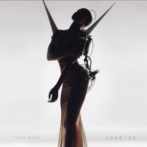 Tinashe – They Don't Understand