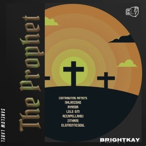 BrightKay & ElementicSoul – In the Night (feat. AccapellaDj)