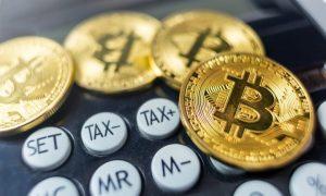 Bitcoin Metrics Reveal Interesting Data! Is BTC Price Back on Track?