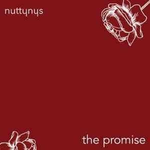 Nutty Nys – The Promise