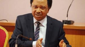 COVID-19: Shehu Sani asks FG to suspend electricity bill, release prisoners