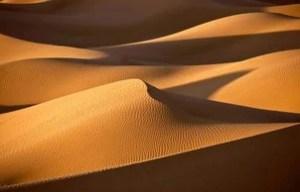 Demand For Data: Dune Analytics Raises $8M in Series A Funding