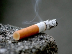 Stakeholders seek global standard for tobacco control tax, excise
