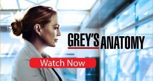 Greys Anatomy S18E02