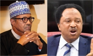 Buhari Increasing Electricity Fuel Price, Tariff, Diverting Attention With Open Grazing – Shehu Sani