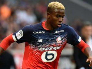 Osimhen has raised the bar for Nigerian footballers, says Elahor