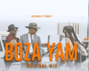 Kaygeewise – Boza Yam Ft. Tebogo TT (Amapiano)