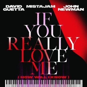 David Guetta Ft. Mistajam & John Newman – If You Really Love Me (How Will I Know)