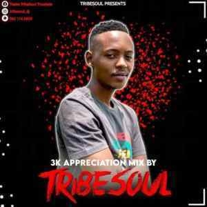 TribeSoul – 3K Appreciation Mix
