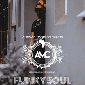 FunkySoul – HouseWednesdays Mix Vol. 14