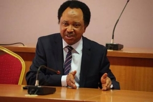 You Are Also Part Of The Autocracy – Shehu Sani Blasts Lawmakers Over Refusal To Lift Ban On Twitter