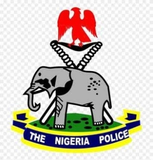 Is Nigerian Police to protect or endanger the citizens?