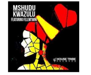 Mshudu – KwaZulu Ft. Felemtwini