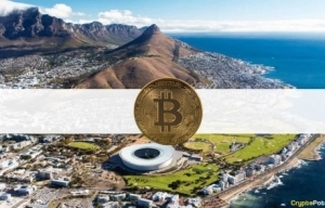 A Major Crypto Scam in South Africa? Two Brothers and 69,000 BTC Have Vanished Together