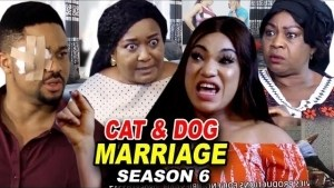 Cat & Dog Marriage Season 6