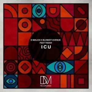 D-Malice & Blomzit Avenue – I C U (feat. Teeah) [Instrumental Mix]