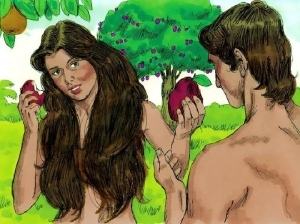 LET'S TALK!! Why Did God Create Adam, Eve With A P*nis & Vag*na? (See This)
