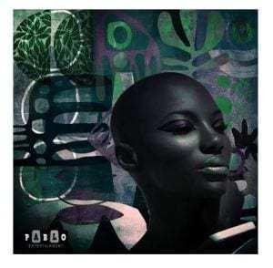 Dj Renaldo, Afrikano Bongo Boyz – Montengo (Original Mix)