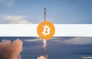 Bitcoin Surged Over $3,000 in Hours Amid Musk & Dorsey's Online Meetup (Market Watch)