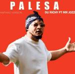 Du Richy – Palesa Ft Mr Jozzers (Original)