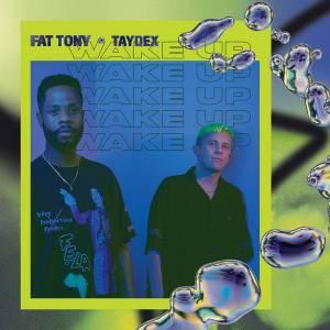 Fat Tony & Taydex - Make It Ft. Revenge Wife