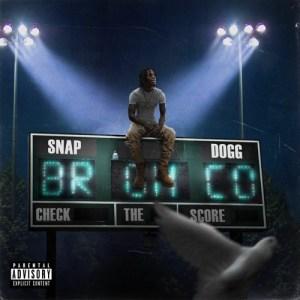 Snap Dogg - Check The Score